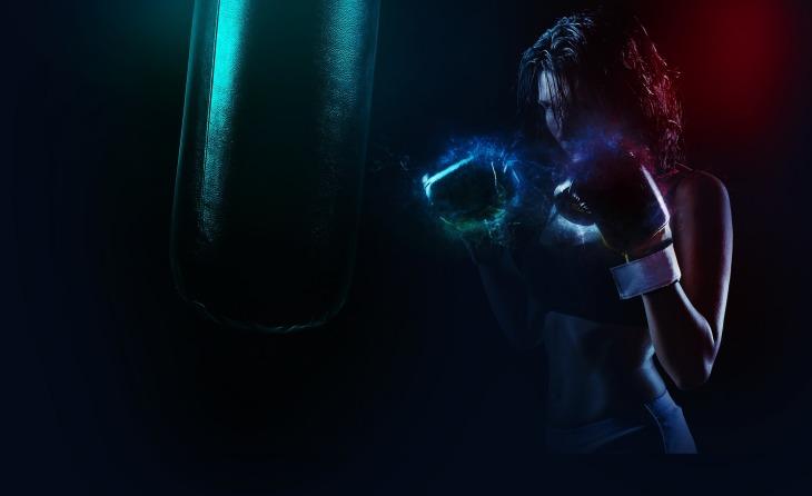 boxer-1984344_1920